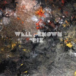Well-Known Pix - Album
